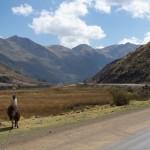 Chroniques péruviennes (3): Renouveaux