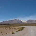 The Ruta Andina